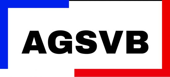 Webseiten-Logo der Arbeitsgemeinschaft der Schwerbehindertenvertretungen des Bundes (AGSVB)